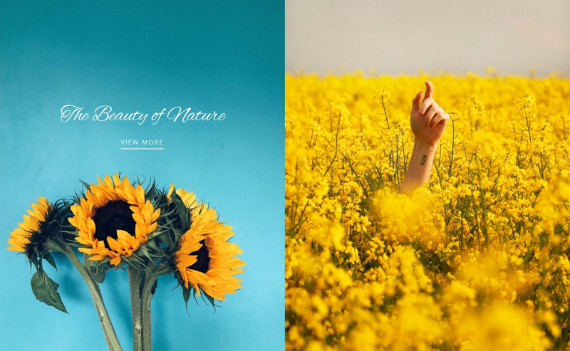 Beauty of nature Web Page Designer