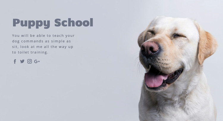 Basic obedience training HTML Template