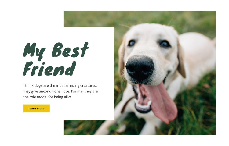 Dog care techniques HTML Template