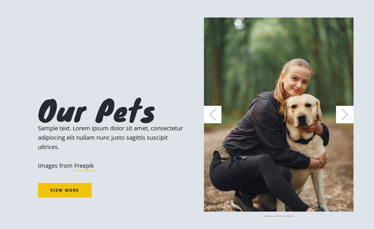 Our Pets Website Mockup
