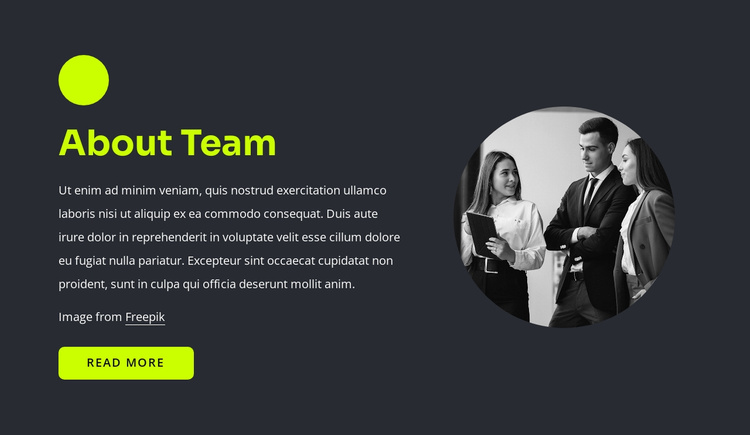 Web professionals Joomla Template