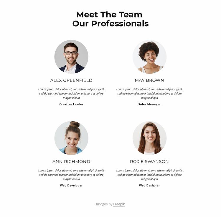 Meet the creative team Website Template