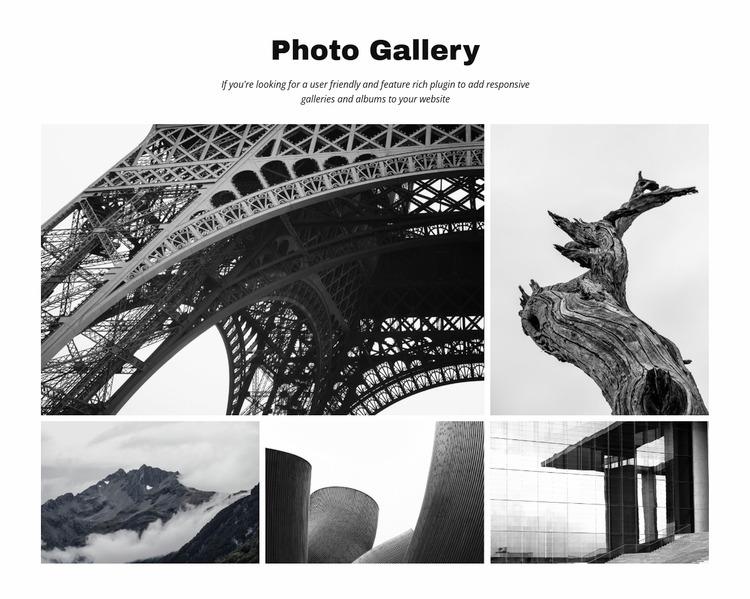 Photo Gallery WordPress Website Builder