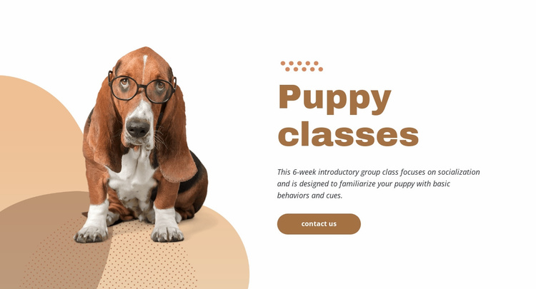 Effective and easy puppy training Website Template