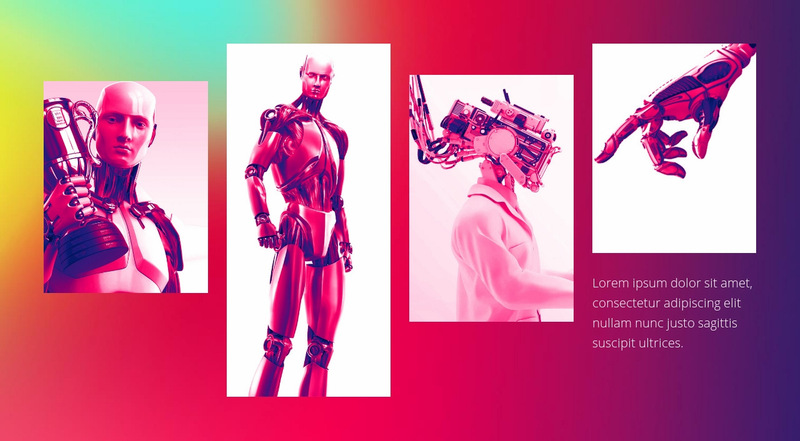Fashion clothing Web Page Designer