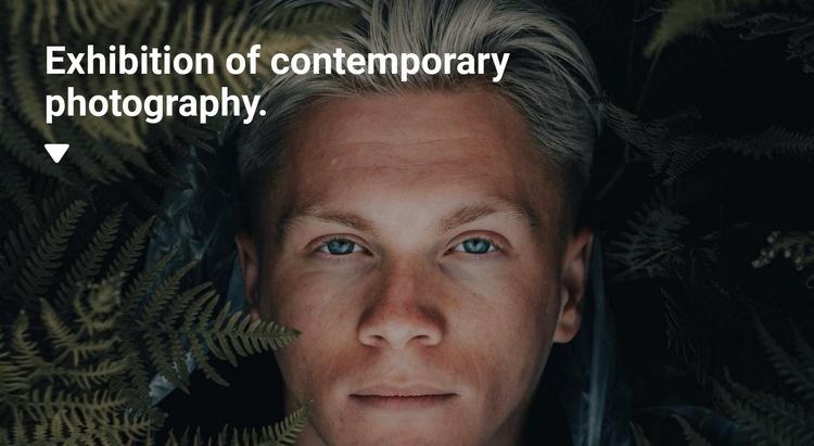 Exhibition of exclusive photographs Web Page Designer