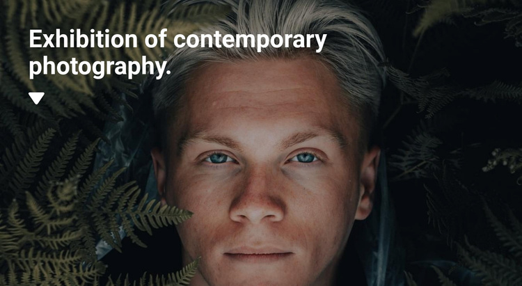 Exhibition of exclusive photographs Website Design