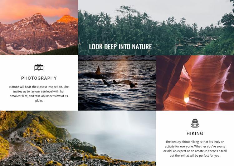 Adventure travel company Html Website Builder