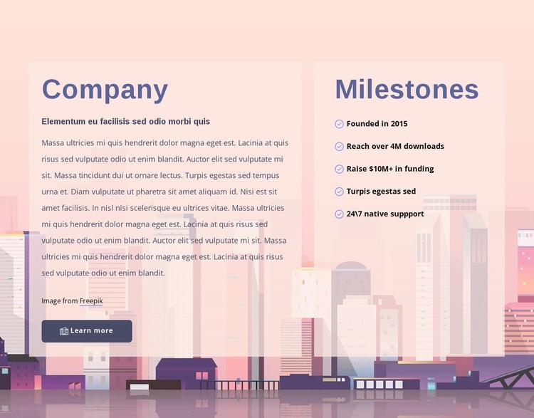 About development company Web Page Designer