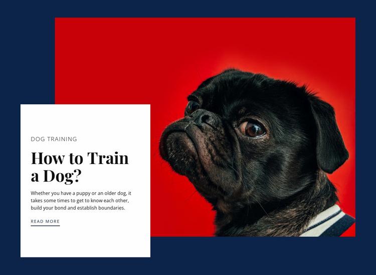 Online reactive dog class Website Template