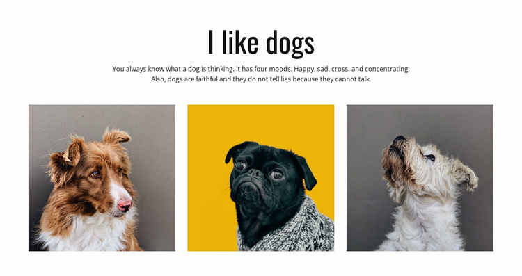 Gift ideas for pet owners Website Template