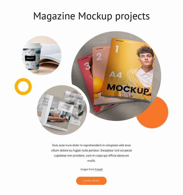Magazine mockups Website Template