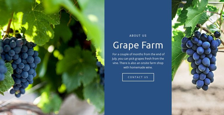 Grape Farm Website Mockup