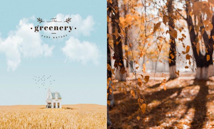 Autumn colors WordPress Theme