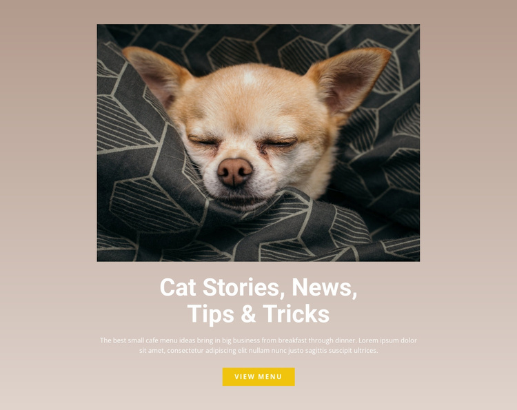 Pet stories Website Template