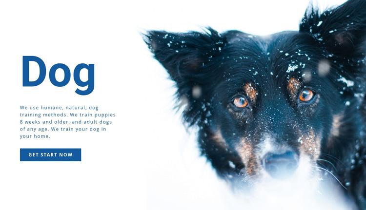 Dog training methods  HTML Template