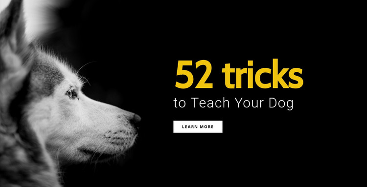 52 Tricks to teach your dog HTML Template