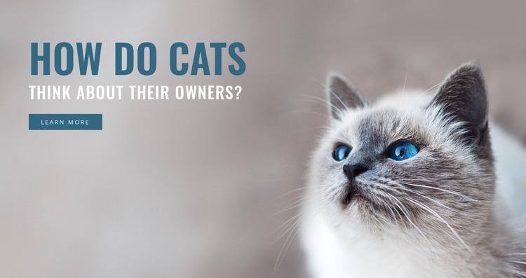 Pet care  HTML Template