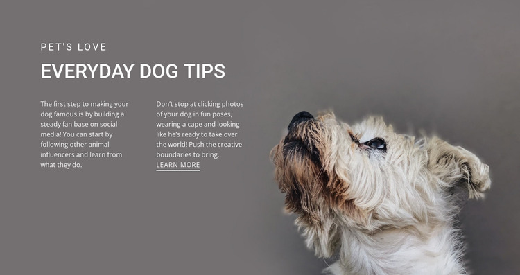 Everyday dog tips HTML Template