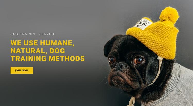 Basic Dog Training HTML Template