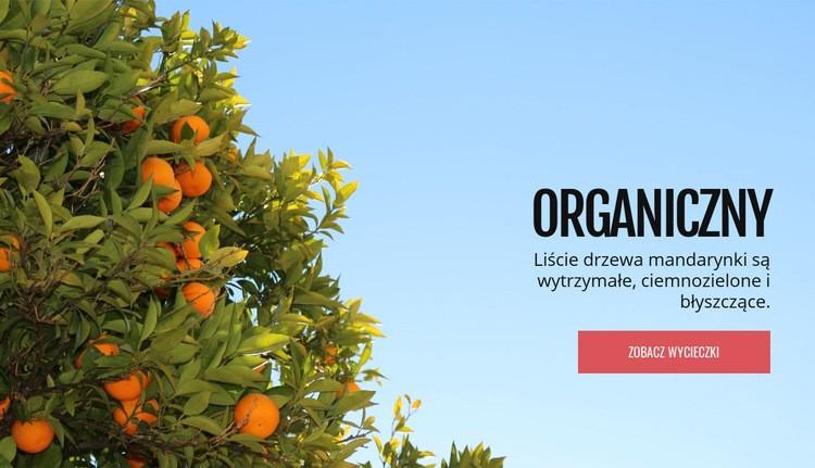 Organiczne owoce naturalne Szablon Joomla