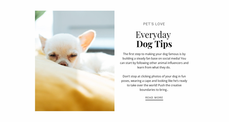 Tips every day Website Template