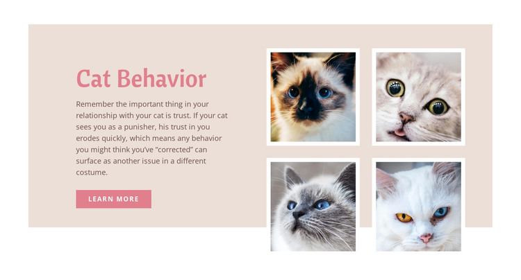 Pet care and love HTML Template
