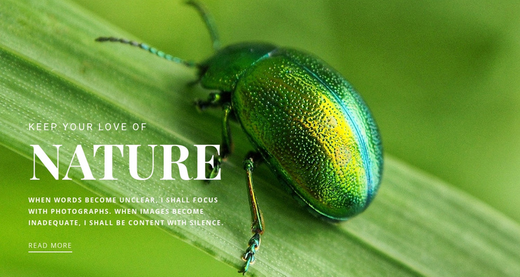 Green beetle One Page Template