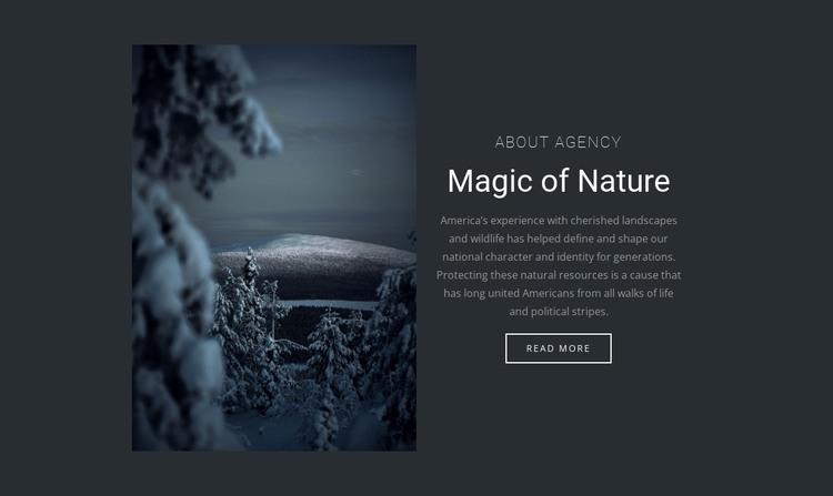 Magic of winter nature HTML Template