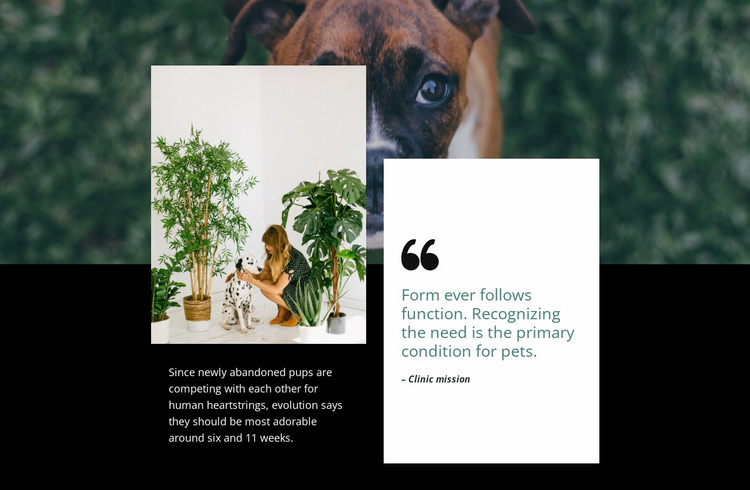 Quote about pets Website Template