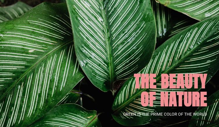 Principles of ecotourism HTML Template