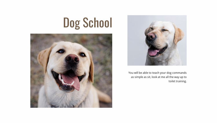 Dog trainers programs Website Template