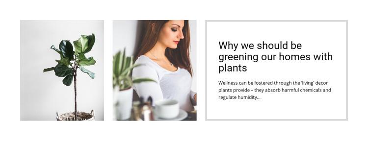 Plants help reduce stress Homepage Design