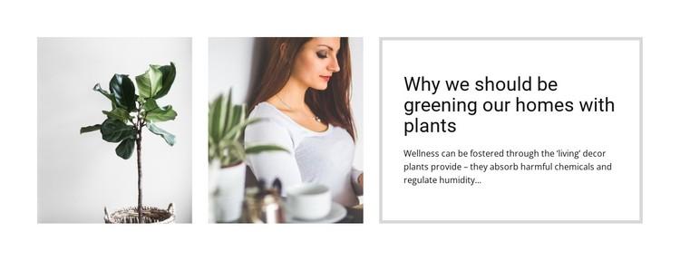 Plants help reduce stress Static Site Generator