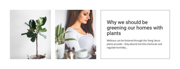 Plants help reduce stress Template