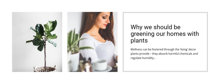 Plants help reduce stress Web Design
