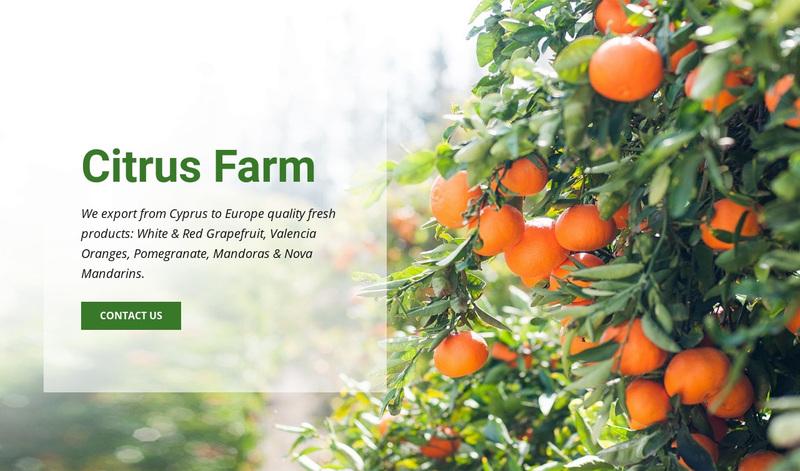 Citrus Farm Web Page Design