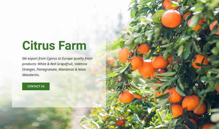 Citrus Farm Website Template