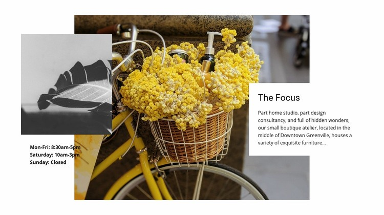 Focus on cute details Html Code Example