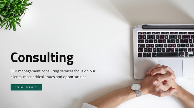 Consulting services  WordPress Website Builder