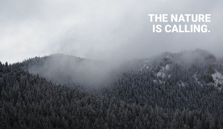 Foggy forest HTML Template