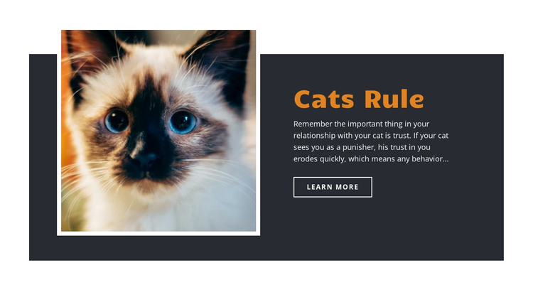 Rules and guidance HTML Template