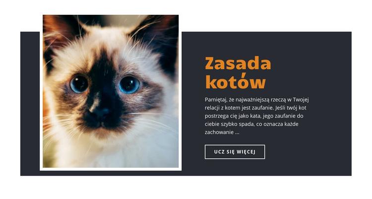 Zasady i wskazówki Szablon witryny sieci Web