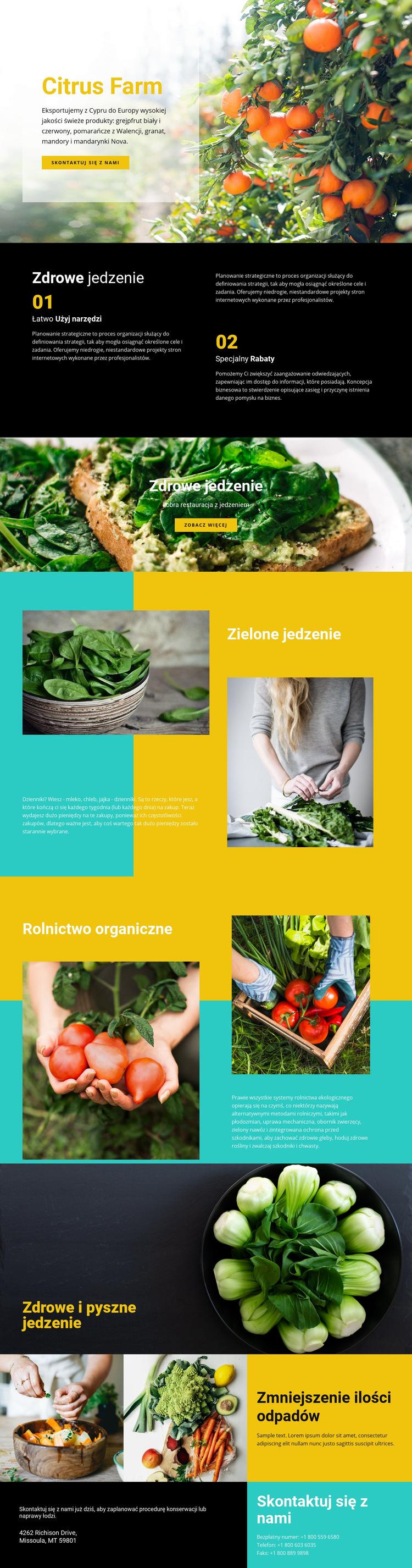 Zdrowe i świeże jedzenie Szablon witryny sieci Web