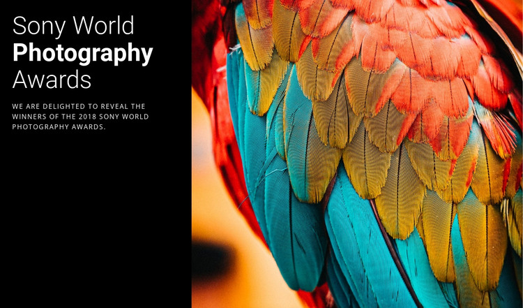 Photo Award of the Year HTML Template