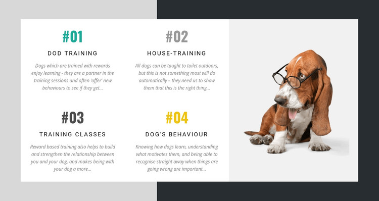 The academy for dog trainers HTML Template