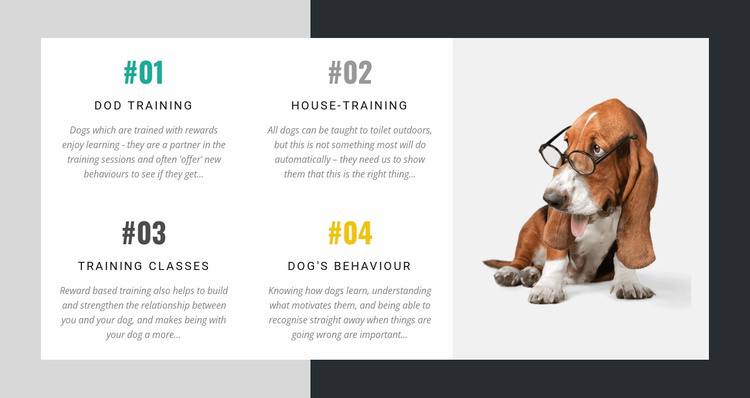 The academy for dog trainers Website Template