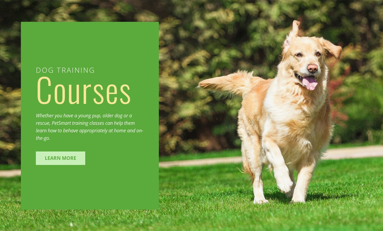 Obedience training for dogs Website Builder Software