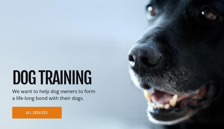 Effective dog behavior training Website Template