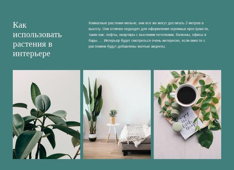 Растения могут повысить урожайность HTML шаблон